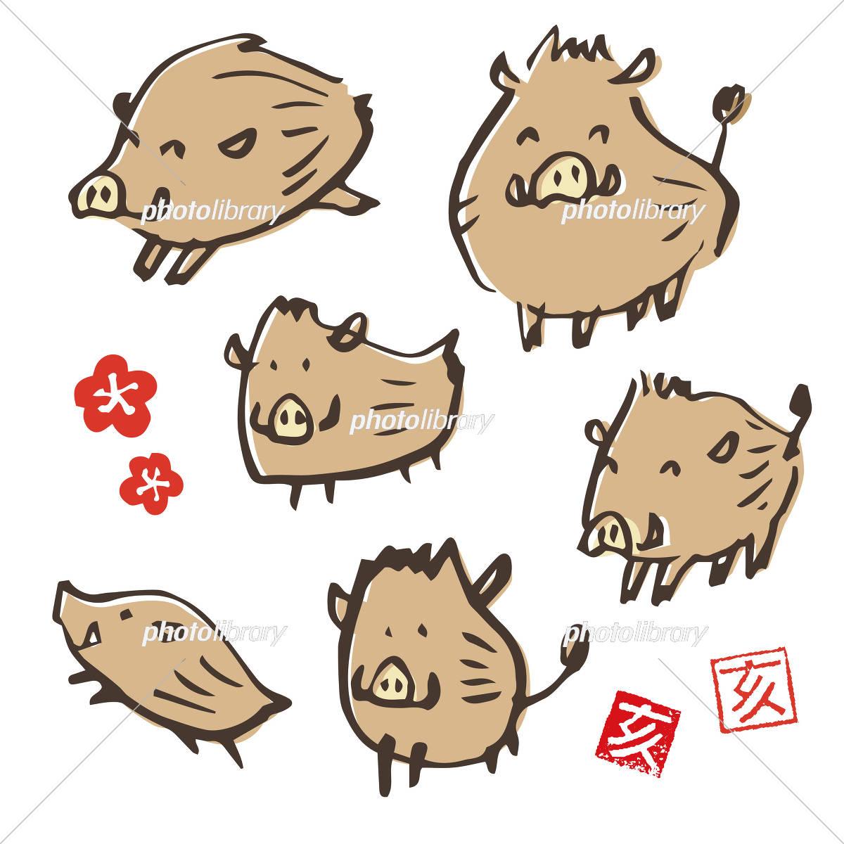 手書き 猪のイラスト 年賀状素材 干支動物 イラスト素材