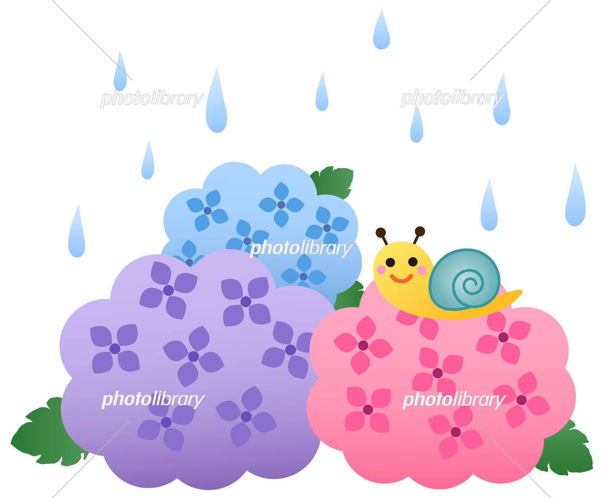紫陽花とかたつむり イラスト素材 5513587 フォトライブラリー