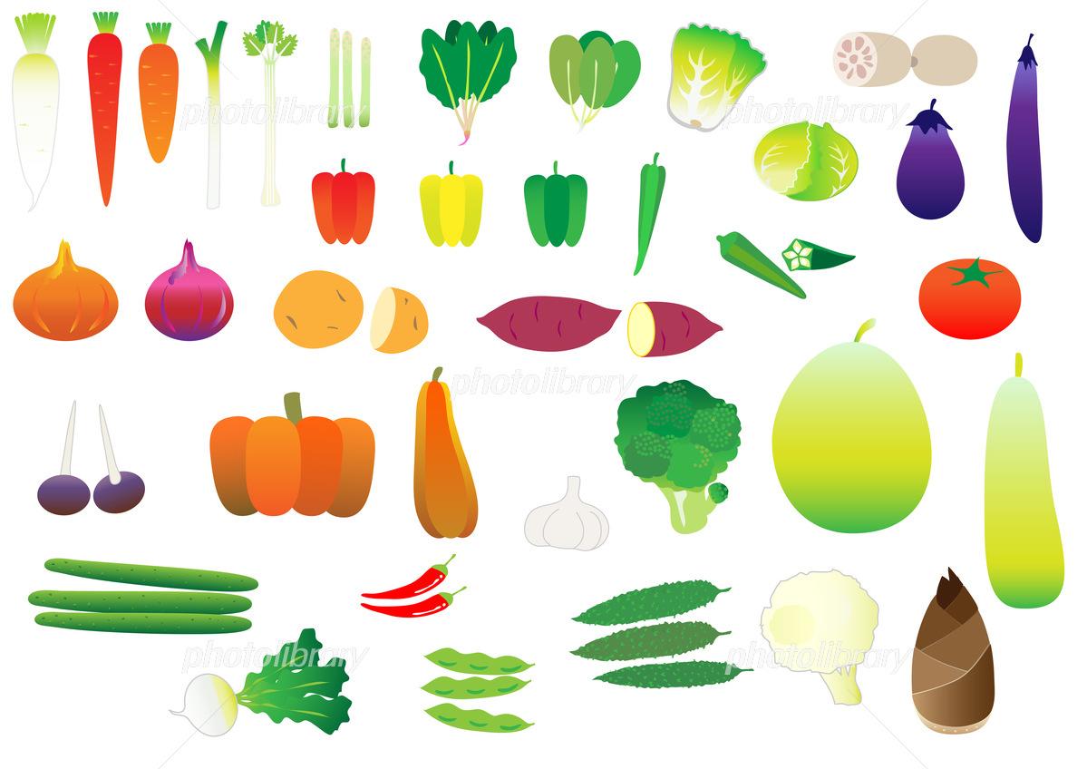 カブのイラスト野菜 かわいいフリー素材集 いらすとや