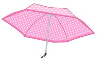 イラスト Folding umbrella(5548334)