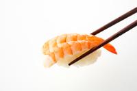 イラスト Sushi shrimp(5588424)