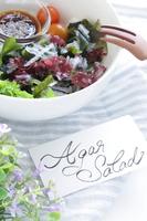 写真 Agar and sprout salad(5588494)