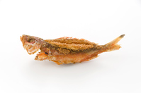 写真 Deep-fried of Gulchun (Takasago)(5588700)