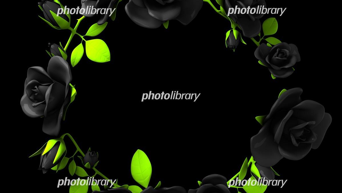 マットな黒バラフレーム 黒背景 イラスト素材 フォトライブラリー Photolibrary