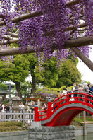 Fuji and arched bridge Stock photo [461897] Rattan