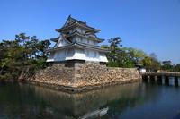 Takamatsu Castle Stock photo [514234] Kagawa