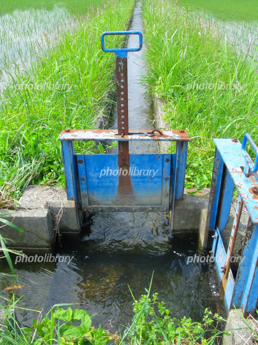 農業用水の水門の写真