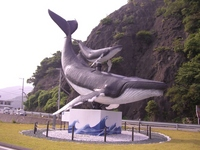 Usa sea breeze park within the monument Stock photo [552000] Whale