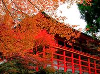 Enryakuji Yokogawa Zhong Stock photo [553995] Shiga