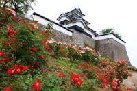 Komineshiro Stock photo [555066] Shirakawa