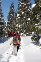 Snowshoe trekking Stock photo [602810] Snowshoe