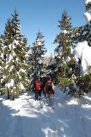 Snowshoe trekking Stock photo [602816] Snowshoe