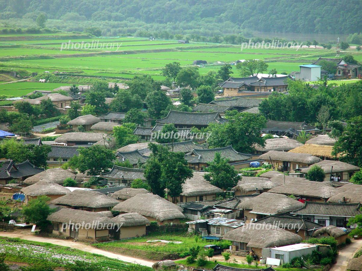 河回村の画像 p1_26