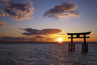 Torii and sunrise Stock photo [686593] Shirahige