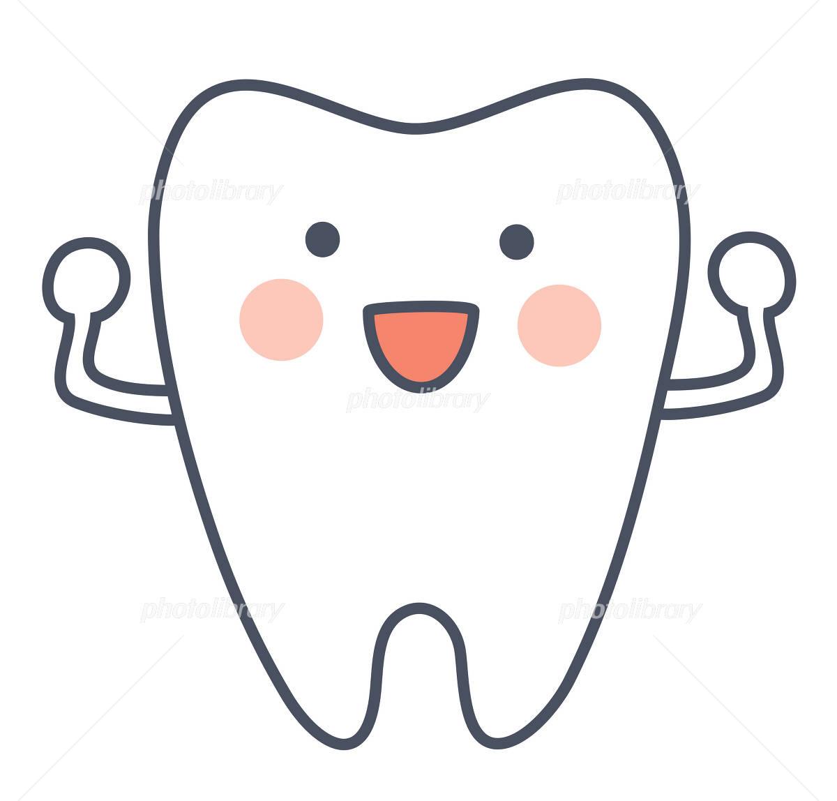 健康的な歯 イラスト素材 853446 フォトライブラリー Photolibrary