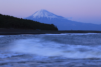 Miho no Matsubara and Mount Fuji Stock photo [1027969] Miho