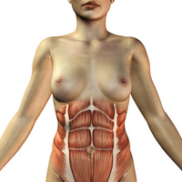 Body image [1038672] Human