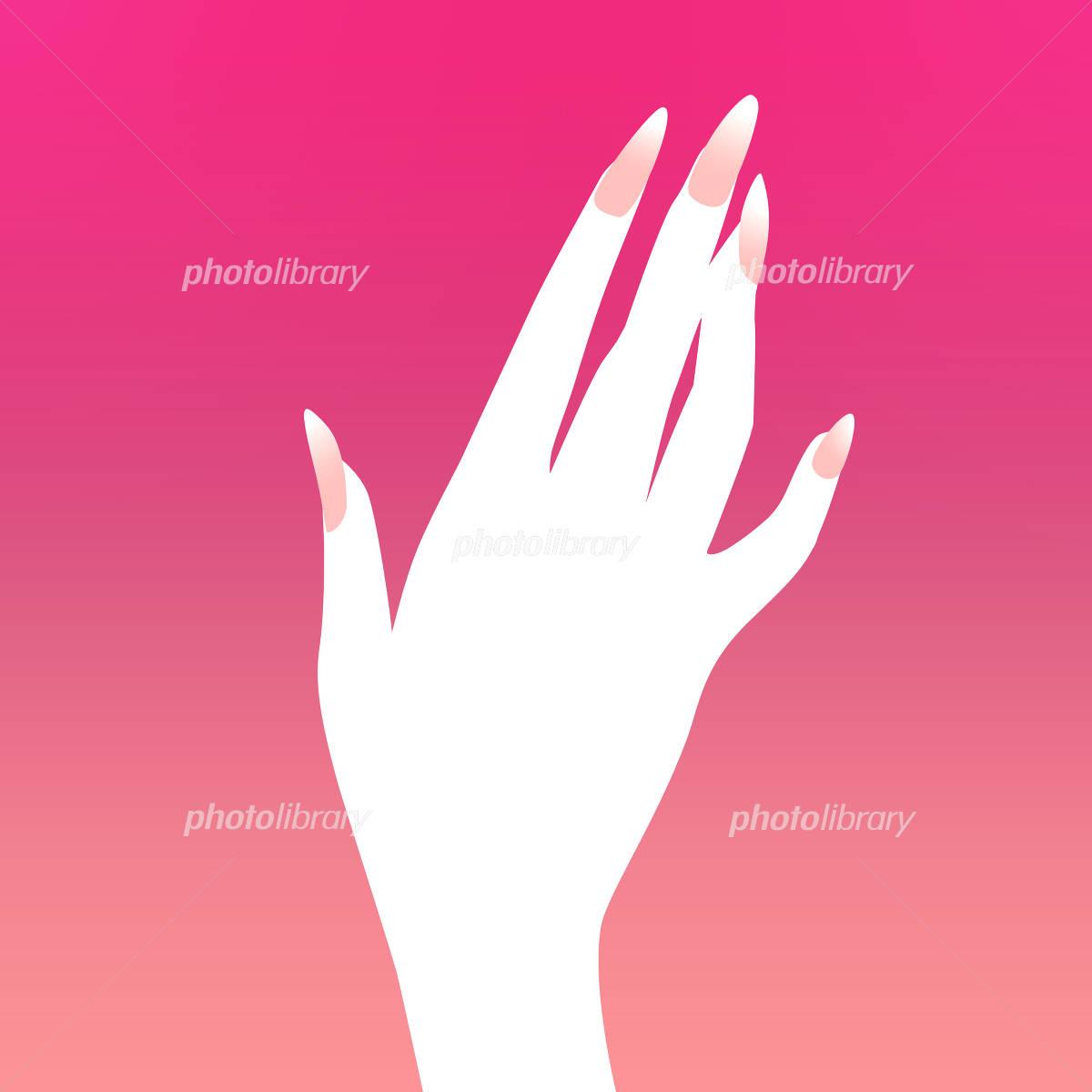 女性の手のイラスト