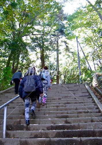 Takao Hiking Photo
