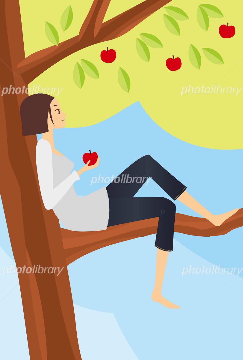 青森 林檎の木に登る女性 イラスト素材 1147412 フォトライブ