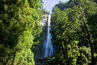 Waterfall of Nachi Stock photo [1147092] Wakayama