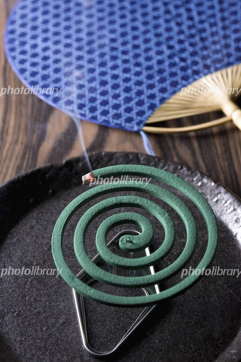 Mosquito coil Photo