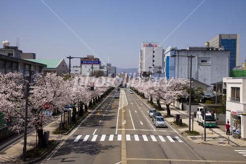 福井市の街並み 写真素材 [ 1338341 ] - フォトライブラリー photolibrary