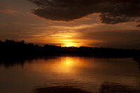 Zambezi Stock photo [1519769] Sunset