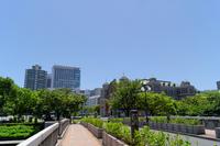 Osaka Nakanoshima Stock photo [1521528] Green