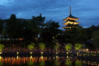 Nara 燈花 Association pond of Sarusawa and five-story pagoda Stock photo [1525643] Nara