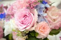 Pastel arrangement of powder pink roses Stock photo [1526142] Rose