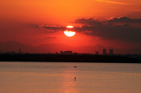 Sunset over the Tokyo Bay Stock photo [1528407] Maihama