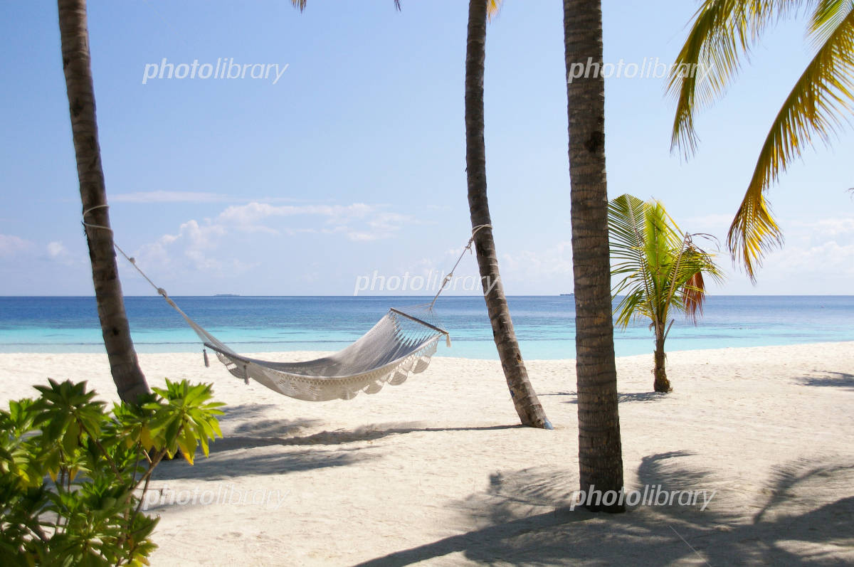 Hammock of sandy beaches of the south of the island Photo