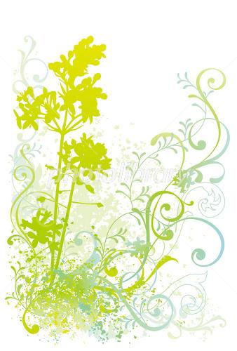 植物イラスト イラスト素材 1638077 フォトライブラリー Photolibrary
