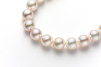 Pearl necklace Stock photo [1628719] Pearl