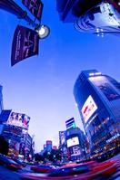 Shibuya night view Stock photo [1629906] Shibuya-ku