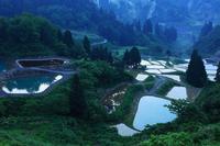 Yamakoshi village of rice terraces Stock photo [1634475] Niigata