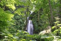 Waterfall of Oirase Stream Kumoi Stock photo [1635299] Waterfall