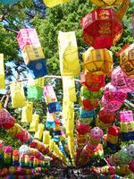 Korean lanterns Stock photo [1725385] Lantern