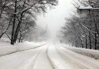 Heavy snowfall of the road Stock photo [1732476] Heavy