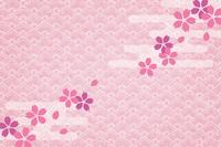 Japanese paper cherry [1738797] Japanese