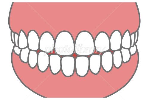 前歯イメージイラスト イラスト素材 1920707 フォトライブラリー