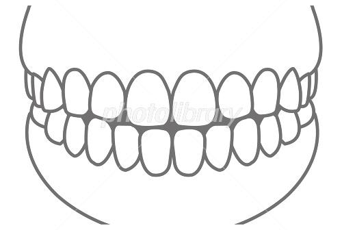 前歯イメージイラスト モノクロ イラスト素材 1920710 無料 フォト