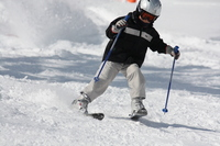 Children to enjoy the skiing Stock photo [1916097] Skiing
