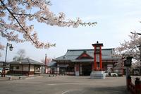 Cherry bloom Yahiko station of landscape Stock photo [1922291] Yahiko