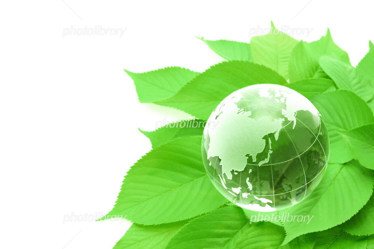 Globe and green leaf Photo