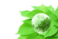 Globe and green leaf Stock photo [2028643] Globe