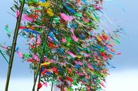 Tanabata decorations Stock photo [2031033] July
