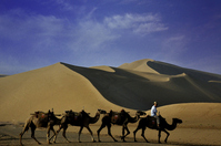 Camel China Dunhuang Nasunayama to go the World Heritage Silk Road Stock photo [2032431] Nasunayama