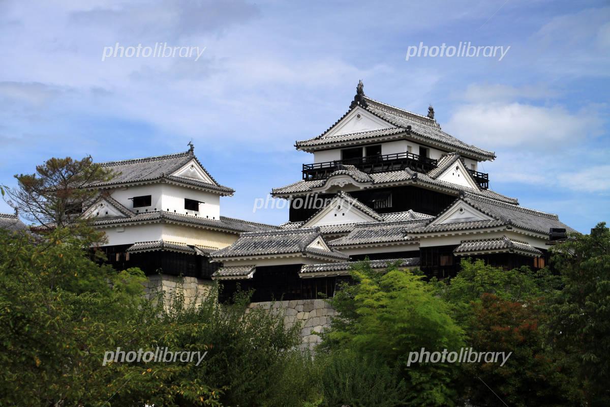 Matsuyama Castle Photo